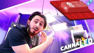 On d?couvre les panneaux Rhino PRO 130W/260W de la marque CannaLED - LEDs Samsung - Croissance/Flo