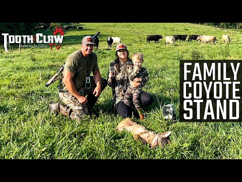 Family Coyote Stand – Coyote Hunting
