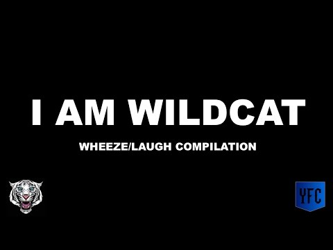 I AM WILDCAT Laughing/Wheezing Compilation - Best of I AM WILDCAT