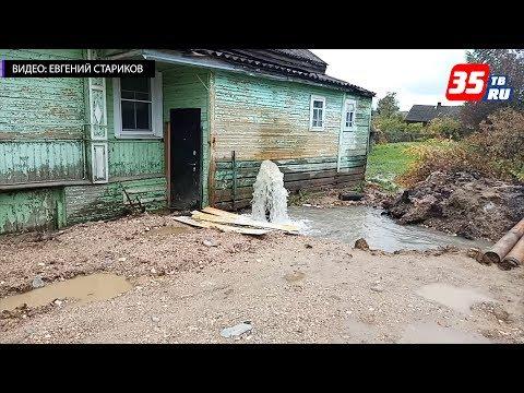 Из-за жительницы Ленинградской области в Белозерске объявлен режим ЧС