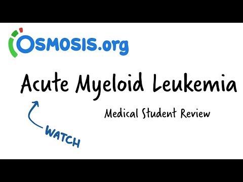Acute Myeloid Leukemia   Clinical Presentation