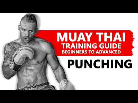 Descargar video de Muay Thai Training Guide. Beginners to Advanced: Punching