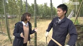 2016年4月放送 「たけのこ 清水さん(京都市西京区)」 「たけのこ」の中...