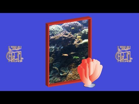RRUCCULLA - Icy Blue Coral (Official Video) Mp3