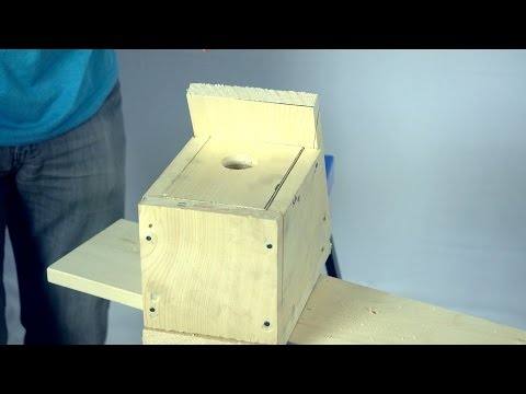 Build a Bird House for Under $5 in Under 5 Minutes