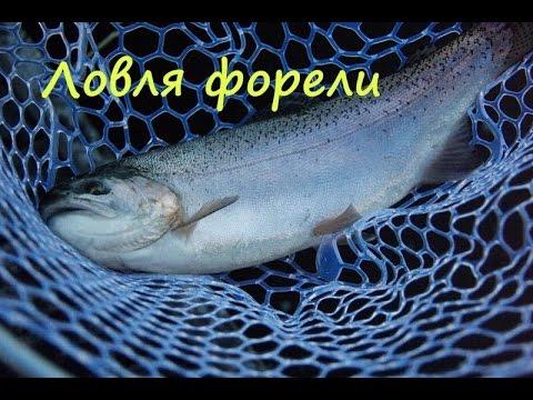 Ловля озерной форели на спиннинг. Часть 1 - YouTube
