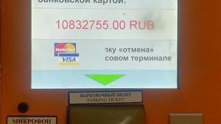 Заложники В Аэропорту Домодедово