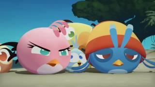 Злые птички Angry Birds Стелла 2 сезон 12 серия Последняя птица из не сдавшихся все серии подряд