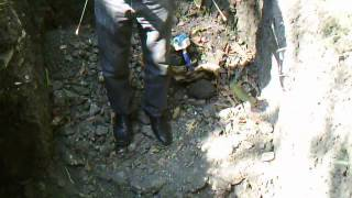 MD 5008 METAL DETECTOR AND DOWSING RODS IN ACTION