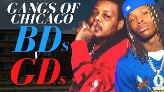 Gangs of Chicago - BDs v GDs