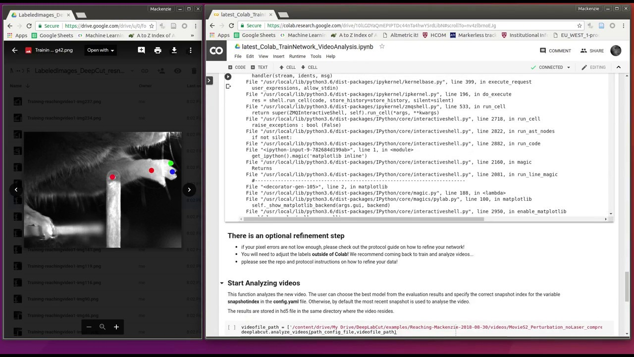 Tutorial: using DeepLabCut with Google Colaboratory