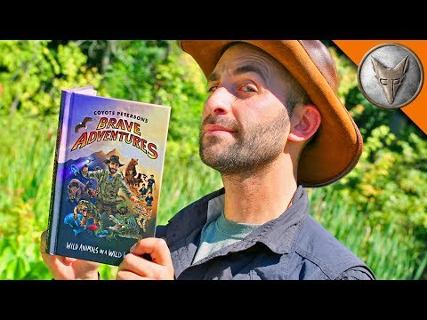 Thumbnail: SNEAK PEEK! Brave Adventures Book!