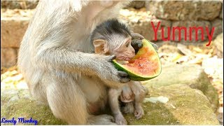 Surprise!! Little Baby Eleno Testing Watermelon With Mama Elsa | Eleno Hungry S0 Much & Want Eating.