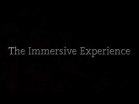 The Immersive Experience