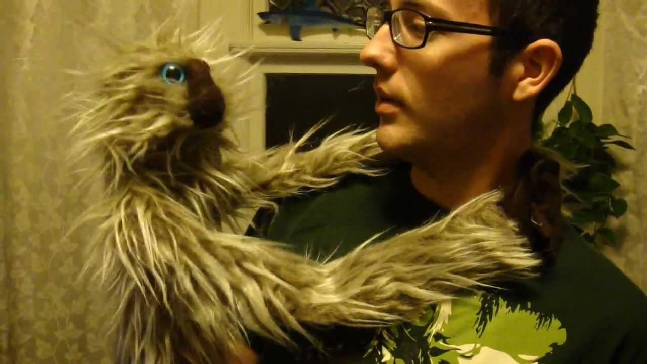 Sloth attack - YouTube