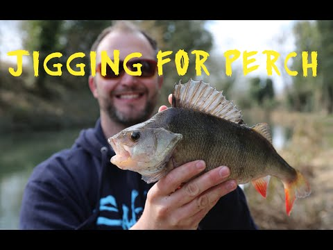 Jigging for Perch