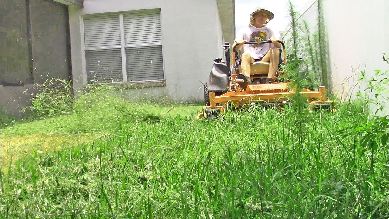 Lawn Care Vlog 23 Small Yard With Tall Grass Amp Weeds