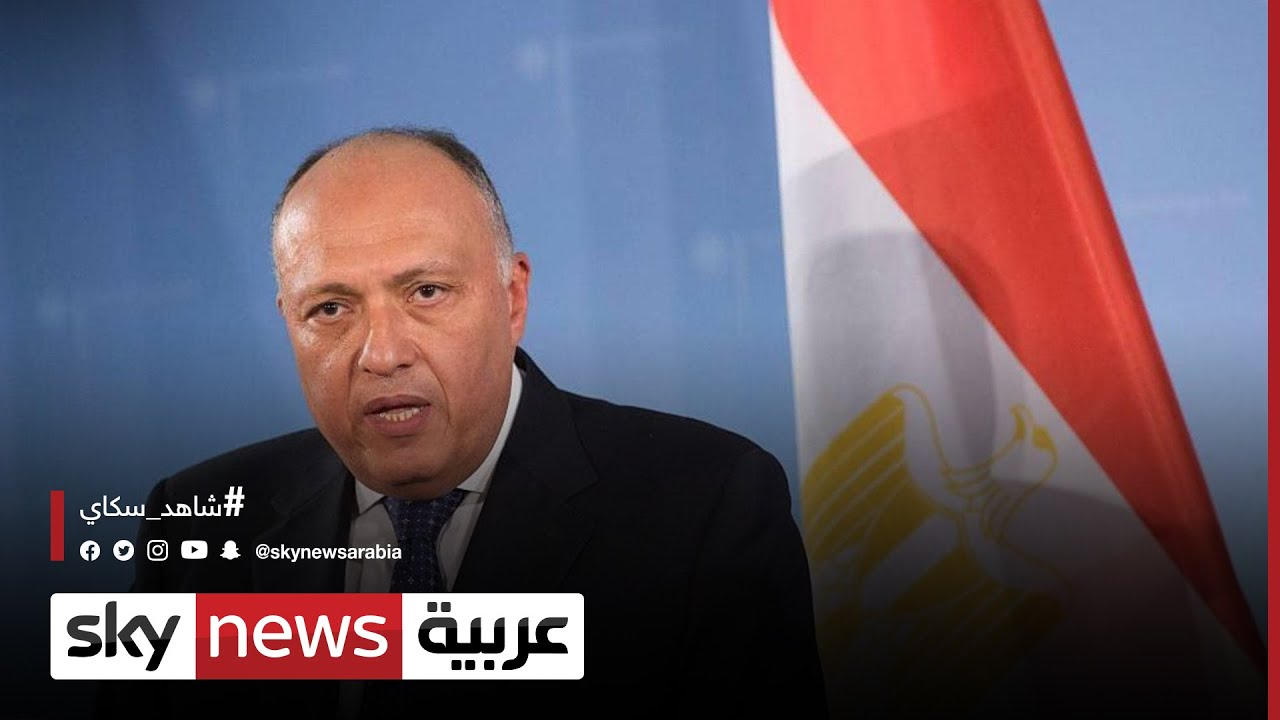 وزيرا خارجية مصر والجزائر يبحثان القضايا الإقليمية