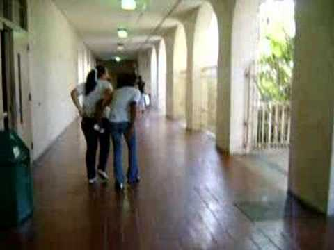 Miami High School Crazies!!!