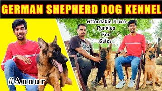 GERMAN SHEPHERD DOG | PUPPIES FOR SALE  | LOW COST PUPPIES | Tamil | OCB VLOG