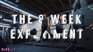 The 8 Week Hip Thrust, Leg Extension, and Nordic Ham Curl Experiment | Bret Contreras Experiment