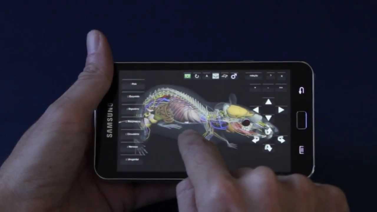 3D Rat Anatomy | Software Anatomia de Rato v1.0 - Android - YouTube