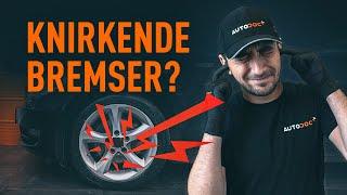 Udskifter Vandpumpe + Tandremssæt på Renault Clio 3 - gratis videotips