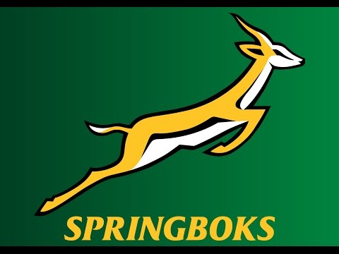 100 Greatest Springbok Tries / 1992 to 2015 / 90 to 81