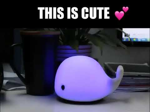 Cute Night Light Baby whale Multicolor LED website
