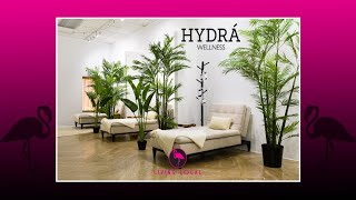 Living Local Refuels with Hydra Wellness