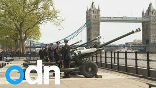 Tower of London gun salute for new Princess