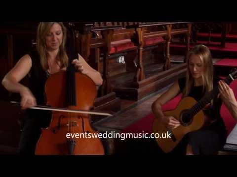 Flightless Bird  Events & Wedding Music