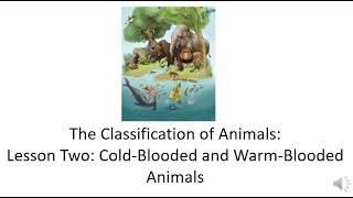 Domain 2: Lesson Two: Cold-Blooded and Warm-Blooded Animals