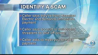 Hawaiian Electric: Don't fall for scammers demanding bill payments