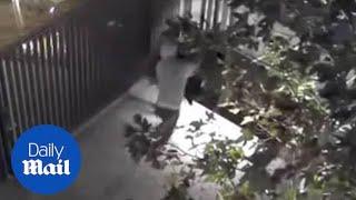 Man violently stabs a homeless man Fernando Perez to death