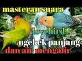 Masteran Burung Lovebird Dan Gemercik Air Cocok Buat Masteran Murai Batu Cucak Ijo Dan Kacer  Mp3 - Mp4 Download