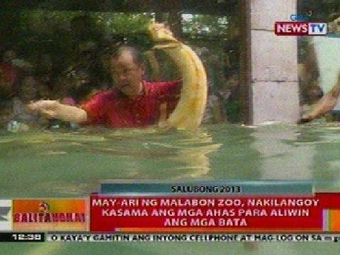 BT: May-ari ng Malabon Zoo, nakilangoy kasama ang mga ahas para aliwin ang mga bata