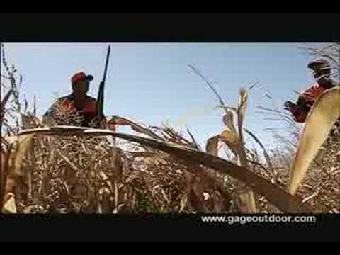 Thunderstik lodge pheasant hunt south dakota youtube for South dakota out of state fishing license