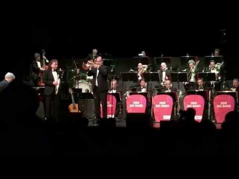 Stardust - SWR Big Band