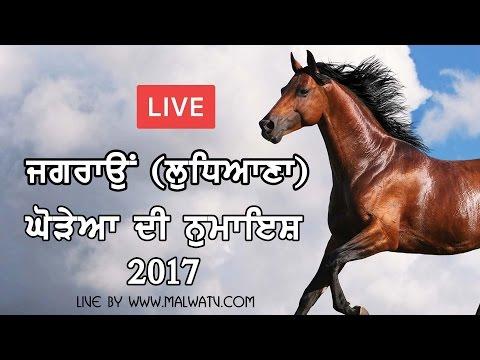 JAGRAON (Ludhiana) HORSE SHOW - 2017    LIVE STREAMED VIDEO