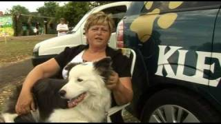 Klever K9's At Grant Thorold Library Open Event 2010, Grimsby