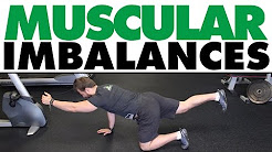 Exercises For Muscular Imbalances | Low Back & Hips