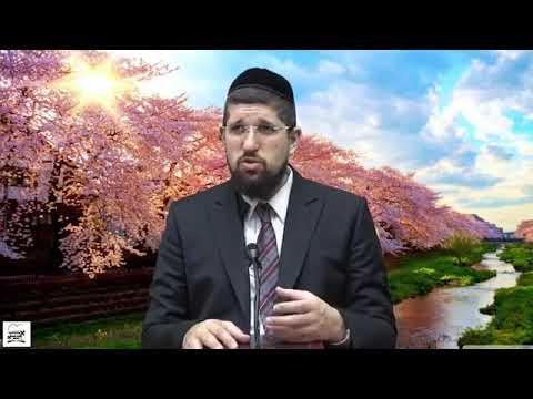 """סוד הנורמולוגיה ביהדות והקשר לחג פורים הרב אליהו עמר שליט""""א"""