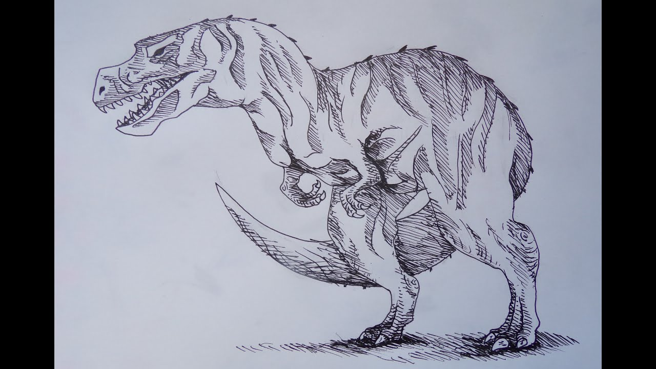 Dessin dessine moi un tyrannosaure youtube - Dessin de tyrannosaure ...