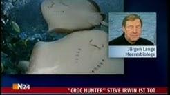 """""""croc hunter"""" Steve Irwin ist tot"""