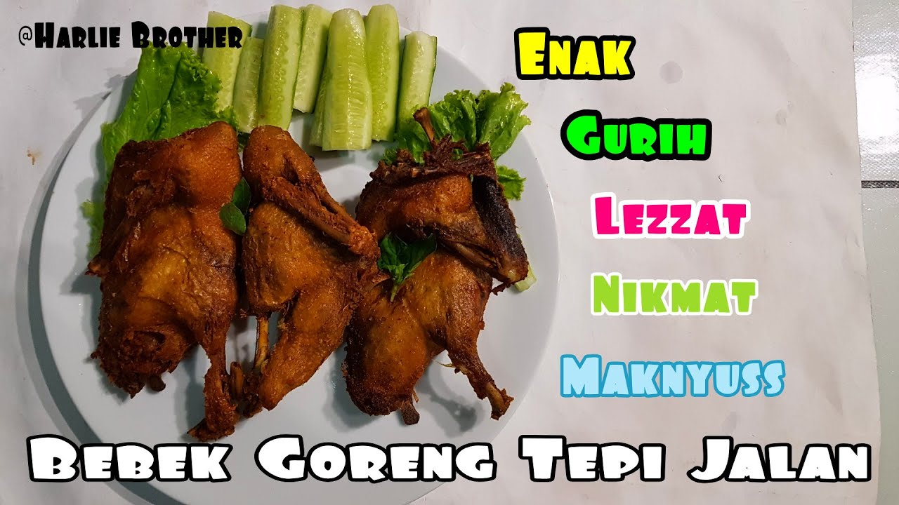 Bebek Goreng Tepi Jalan Mukbang Show | Fried Duck Testing And Review