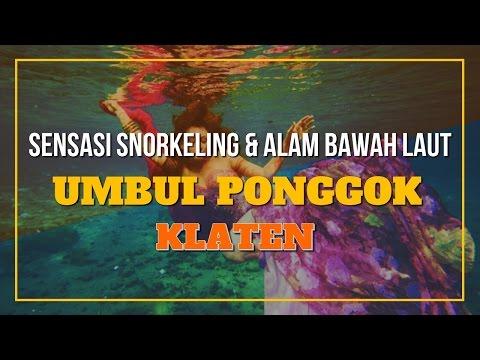 sensasi-snorkeling-dan-alam-bawah-laut-umbul-ponggok-klaten