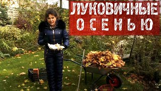 ФАЗЕНДА - 2015.10.25 - Фрагмент 129.
