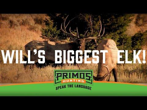 Will Primos' Biggest Elk!