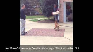 "Jon ""bones""jones Verse Duke! Highest Rated Dog Trainer In Dc, Virginia, Nc,  And Maryland!"